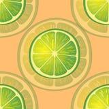 Vektorillustration av stora limefruktskivor i olika vinklar på apelsinen modell Royaltyfria Bilder