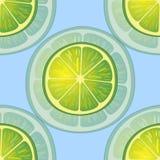 Vektorillustration av stora limefruktskivor i olika vinklar på blått modell Arkivfoto