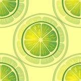 Vektorillustration av stora limefruktskivor i olika vinklar på guling modell Arkivfoton