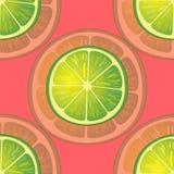 Vektorillustration av stora limefruktskivor i olika vinklar på rött modell Royaltyfri Bild