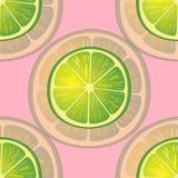 Vektorillustration av stora limefruktskivor i olika vinklar på rosa färger modell Royaltyfria Bilder