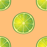 Vektorillustration av stora limefruktskivor i samma vinklar på apelsinen modell Royaltyfria Foton
