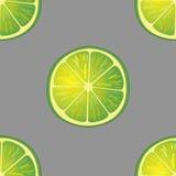 Vektorillustration av stora limefruktskivor i samma vinklar på grå färger modell Arkivbilder