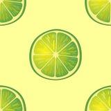 Vektorillustration av stora limefruktskivor i samma vinklar på guling modell Arkivfoto