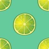 Vektorillustration av stora limefruktskivor i samma vinklar på turkos modell Royaltyfria Foton