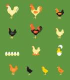 Vektorillustration av tuppen, höna, fågelunge Royaltyfria Foton