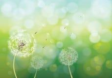 Vektorillustration av vårbakgrund Arkivbild