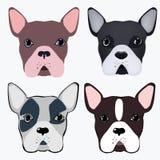 Vektorillustration der französischen Bulldogge Stockbild