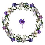 Vektorillustration der netten Blumengirlande der Krokusse und der Lilien lokalisiert auf weißem Hintergrund lizenzfreie abbildung