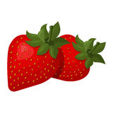Vektorillustration der saftigen Erdbeere Stockfoto