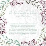 Vektorillustration des bunten Blumensatzes Rosen und Kräuter I Stockfoto