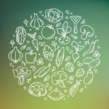 Vektorillustration des Gemüses im Kreis stockfotografie