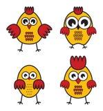 Huhn Stockbilder