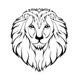 Vektorillustration des Kopfes eines Löwes vektor abbildung