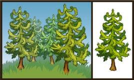 Vektorillustration des Tannenbaums Stockbilder