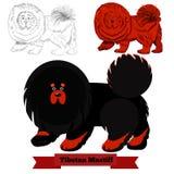 Vektorillustration des tibetanischen Mastiffs Hunde Stockfotos
