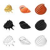 Vektorillustration des Tier- und Dekorationssymbols Stellen Sie vom Tier- und Ozeanaktiensymbol f?r Netz ein stock abbildung