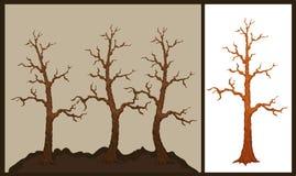 Vektorillustration des trockenen Baums Lizenzfreie Stockfotografie