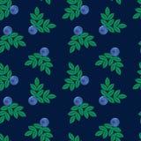 Vektorillustration, efterföljd av broderi blå skogsommar Royaltyfria Foton