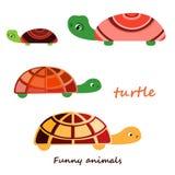 Vektorillustration einer Schildkröte Stockfoto
