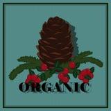 Vektorillustration för organiska produkter stock illustrationer
