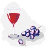 Vektorillustration: Glas des Rotweins und der Traube Stockfoto