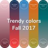 Vektorillustration, infographics, moderiktiga färger av de fal 2017na Arkivbild
