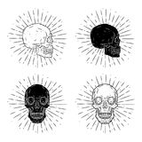 Vektorillustration med den mänskliga skallen på svart tavla Använt för affisch, baner, t-skjorta tryck, påsetryck, emblem och log Arkivfoton