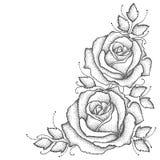 Vektorillustration med den två prack rosblomman och sidor i svart på vit bakgrund Blom- beståndsdelar med öppet steg stock illustrationer