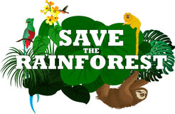 Vektorillustration med djungelrainforestdjur Royaltyfria Bilder