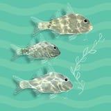 Vektorillustration med fiskar och algen stock illustrationer