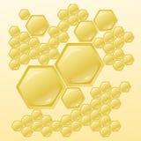 Vektorillustration med honungskakor Vektor Illustrationer