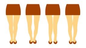 Vektorillustration med olika former av kvinnaben stock illustrationer