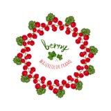 Vektorillustration med ramen för röda vinbär för vattenfärg Handen drog bäret för bönder marknadsför, örtte Arkivfoton