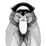 Vektorillustration mit einem abstrakten Affen Stockbild