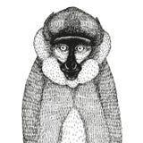Vektorillustration mit einem abstrakten Affen Stockfotografie
