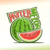 Vektorillustration på temat av vattenmelon Arkivfoto