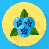 Vektorillustration, runda symbolsblåbär för lägenhet, blåa bär w Arkivbild