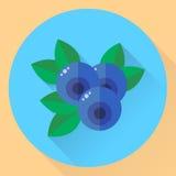 Vektorillustration, runda symbolsblåbär för lägenhet, blåbär, blått Arkivbilder