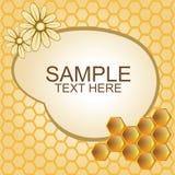 Vektorillustration von Bienenwaben und von Blumen Lizenzfreies Stockfoto
