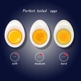 Vektorillustration von hart gekochten Eiern vektor abbildung
