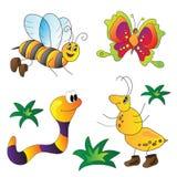 Vektorillustration von Insekten Lizenzfreie Stockfotos