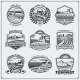 Vektorillustration von Retro- Landschaften Bewirtschaften Sie neue Lebensmittelkennzeichnungen, Ausweise, Embleme und Gestaltungs Stockbilder