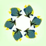 Vektorillustration von sechs schwimmenden Fischen Coral Fish vektor abbildung