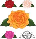 Vektorillustrationen av blomman steg stock illustrationer