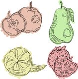 Vektorillustrationen av en innegrej skissar, fruktäpplet, päronet, citronen, jordgubbe vektor illustrationer