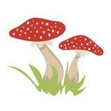 Vektorillustrationen med champinjoner avbildar skogbevekelsegrundnaturen Arkivfoton