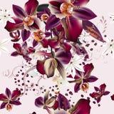 Vektorillustrationen på ett tropiskt tema gömma i handflatan blad och orkidér royaltyfri illustrationer