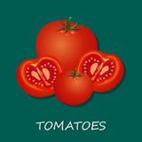 Vektorillustrationer av nya tomater, baner, mall Arkivfoto