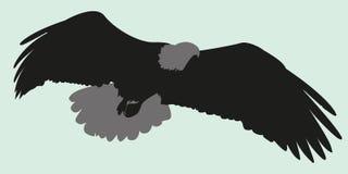 Vektorillustrations-Schattenbildadler Lizenzfreie Stockbilder